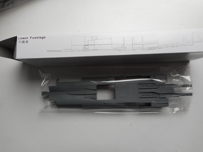 Mig 31 - AMK - 1/48 Dscn9540