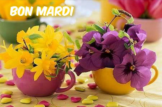 Mardi 9 mai 27547410