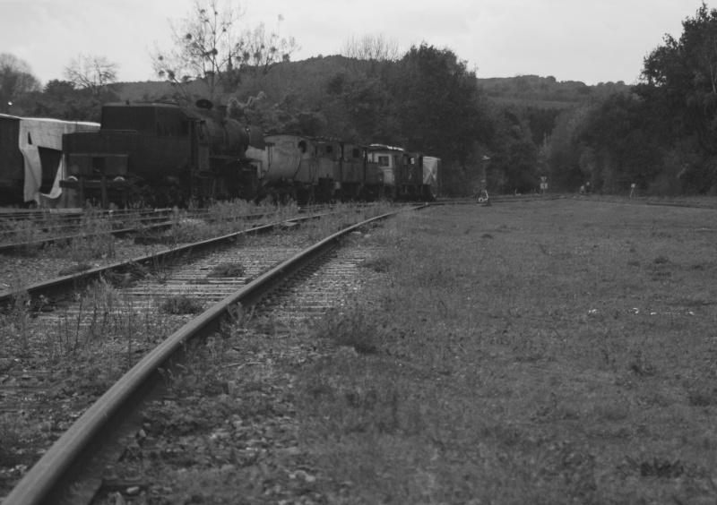 Images ferroviaires Avec_l10