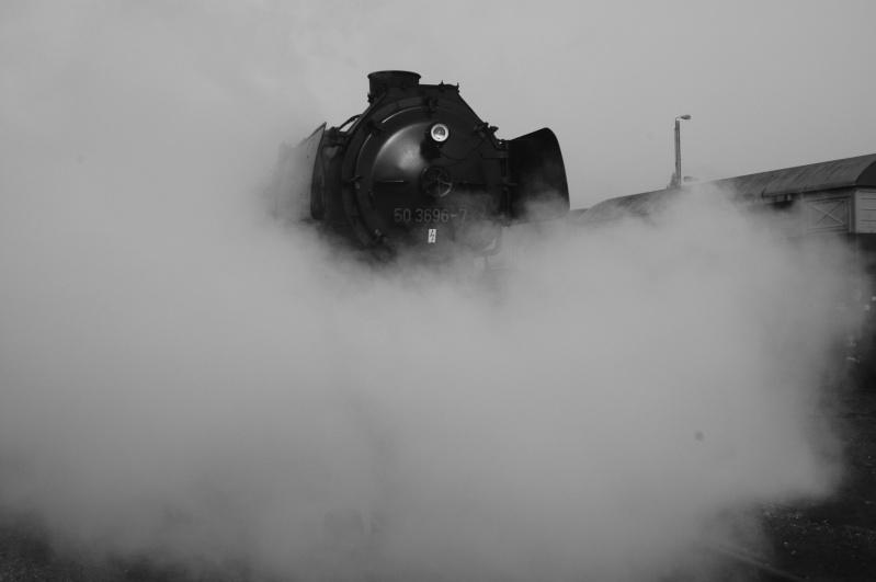 Images ferroviaires Festiv10