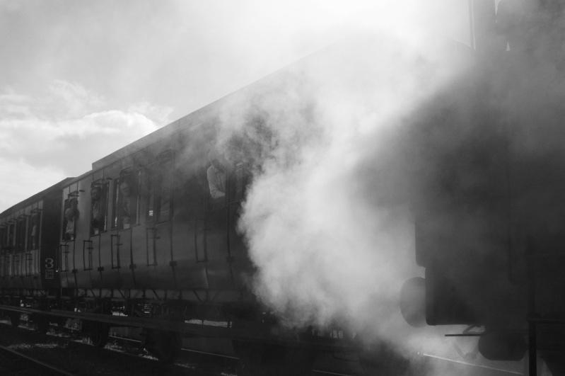 Images ferroviaires Festiv11
