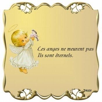 bonne nuit mon ange 14763011