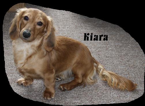 Creams Kiara10