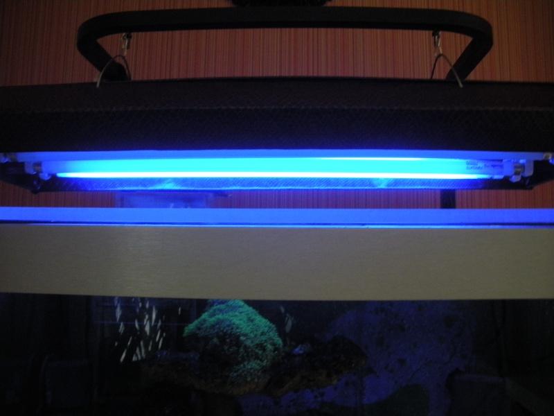 rampe - ballaste néon t5 Dscn1012