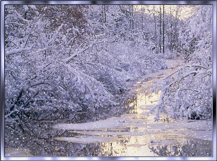 Bonne Lundi Winter10