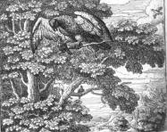 Fables d'Esope - Page 3 Du-mil10