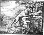Fables d'Esope - Page 2 Du-ren13