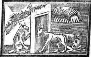Fables d'Esope - Page 2 L-ane-11