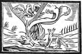 Fables d'Esope - Page 2 Le-coq11