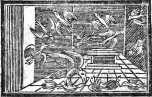 Fables d'Esope - Page 2 Le-mil10