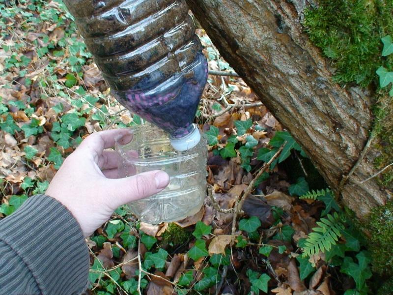 Filtre à eau improvisé Dsc02529