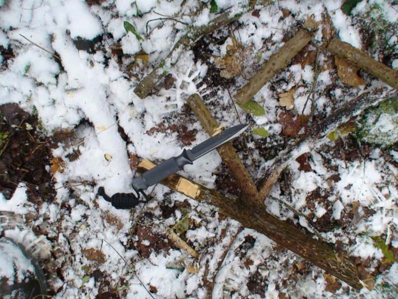 votre poignard, couteau ? - Page 2 Dsc02664