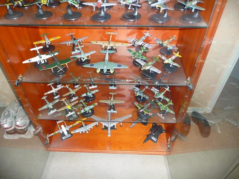 mes aquariums à avion P1010101