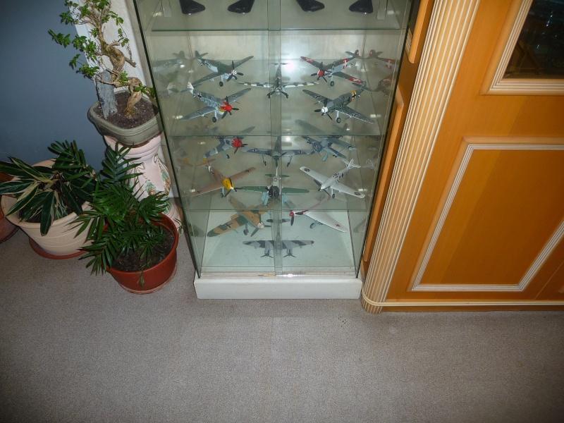 mes aquariums à avion P1010105