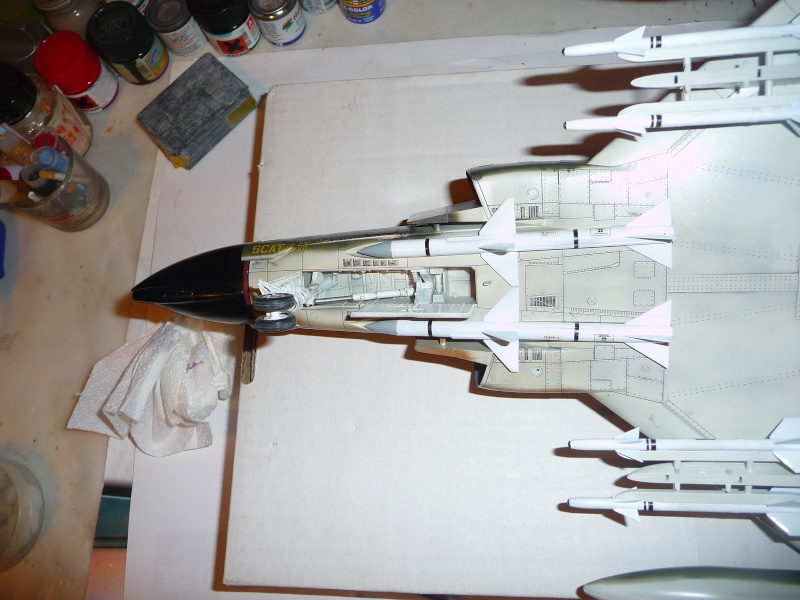 phantom II f4-c P1010449