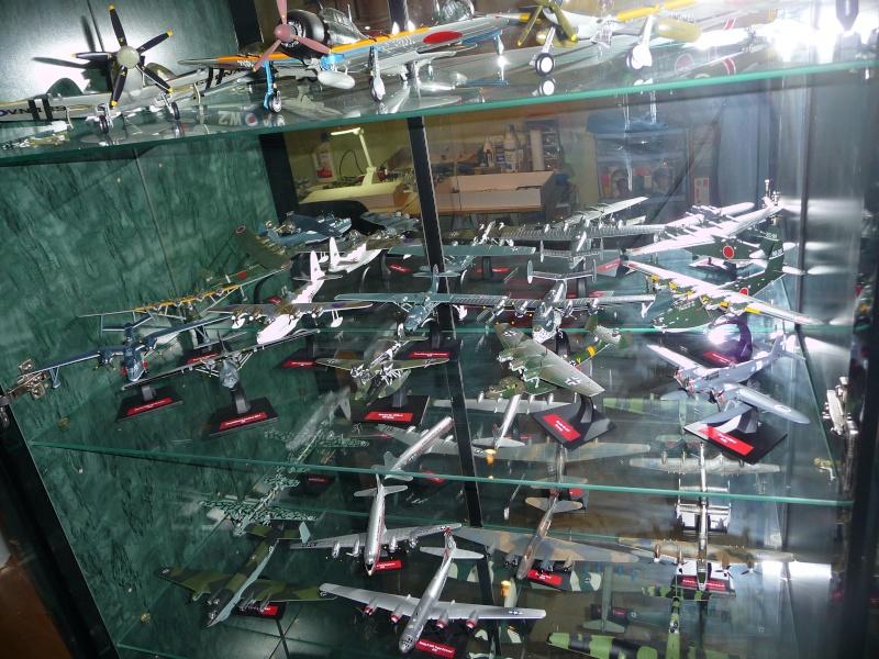 mes aquariums à avion P1010497