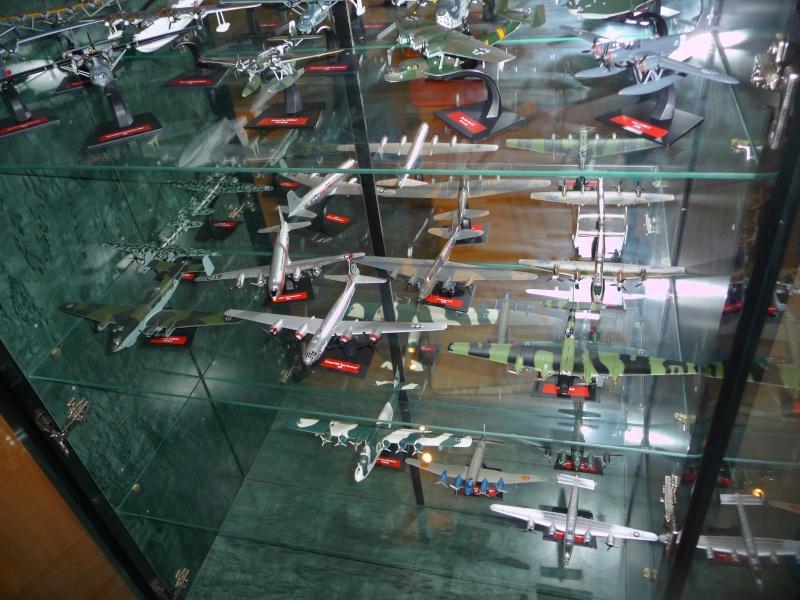 mes aquariums à avion P1010498
