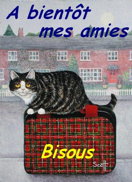 """Le QUIZ du Vendredi 12 Février : """"Les Initiales de chanteurs"""" Chat_s12"""