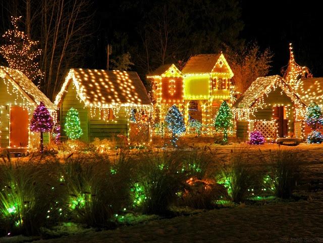 Les illuminations de Noël pour les fêtes 2.015   2.016 ! - Page 2 Illum_15