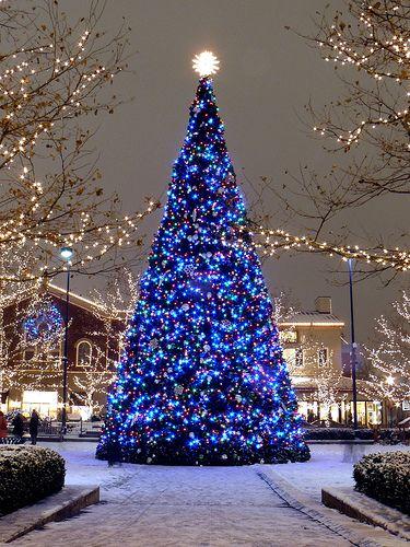 Les illuminations de Noël pour les fêtes 2.015   2.016 ! - Page 3 Illum_21
