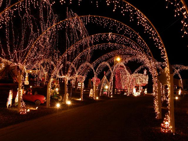 Les illuminations de Noël pour les fêtes 2.015   2.016 ! - Page 4 Illum_28