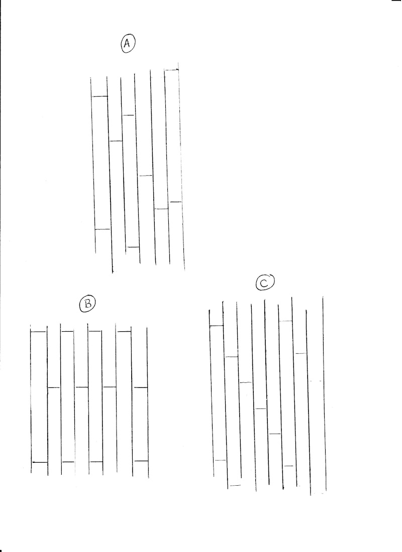 Goélette Toulonnaise (Plan AAMM 1/75°) par jojo la bricole - Page 2 Lattes10