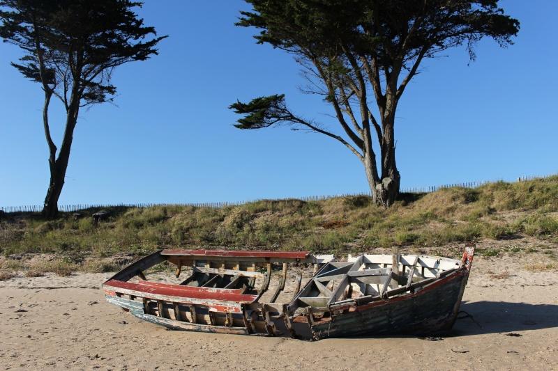 Fin de vie .... Cimetières de bateaux .... - Page 6 Img_0111