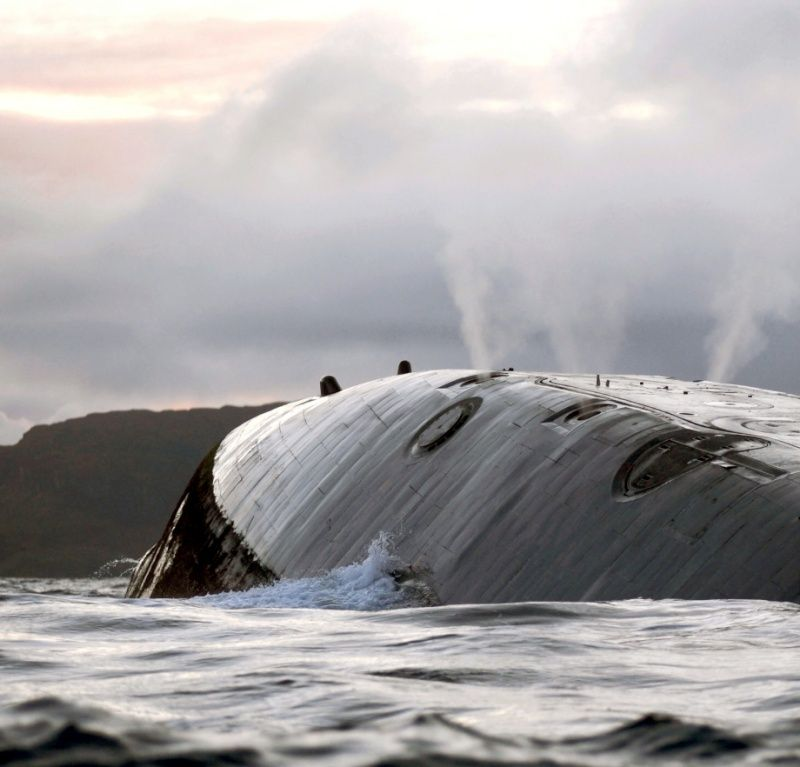 photos de divers sous marin - Page 2 5411