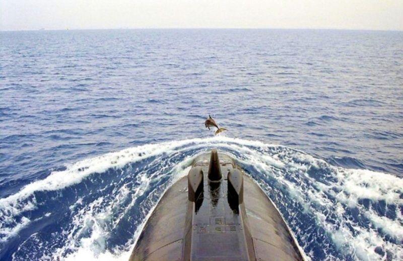 photos de divers sous marin - Page 2 5911