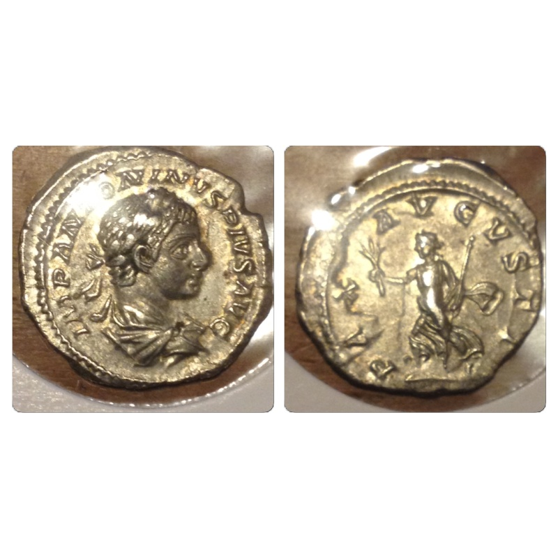 echange romaines contre arvernes Img_5116