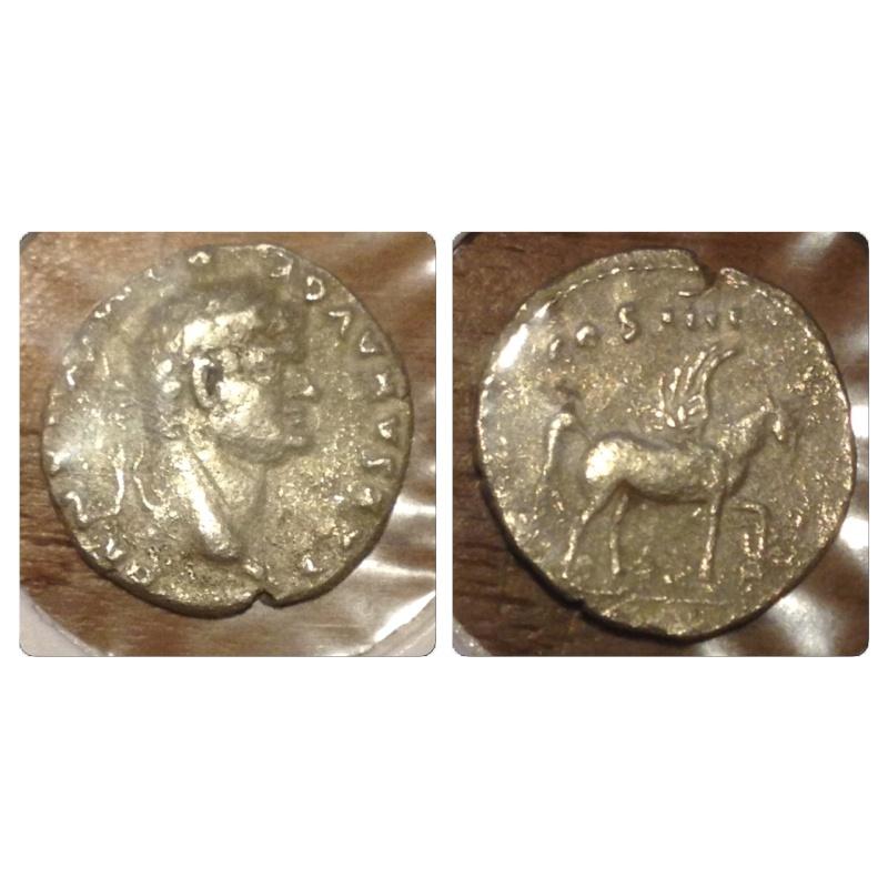 echange romaines contre arvernes Img_5117