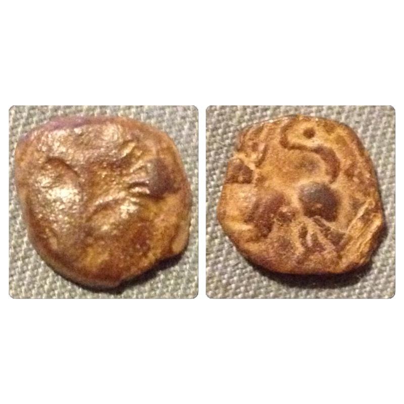 Bronze au renard Img_5218