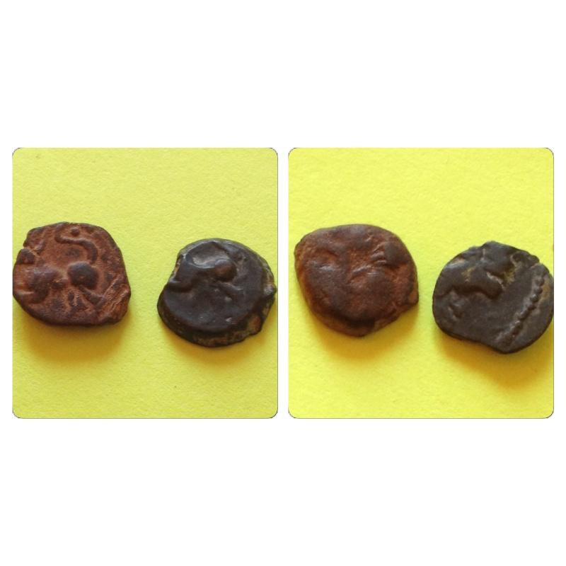 Bronze au renard Img_5219