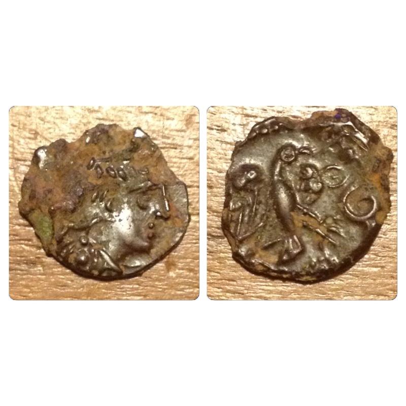 Bronze à l'oiseau  Img_5310