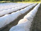 Агроволокно (спанбонд) - продажа и поставка Ddnddd19