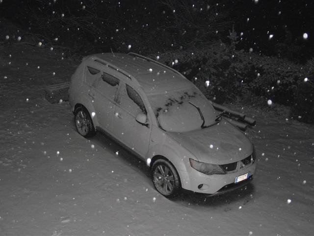 Gippo under snow Gippou10
