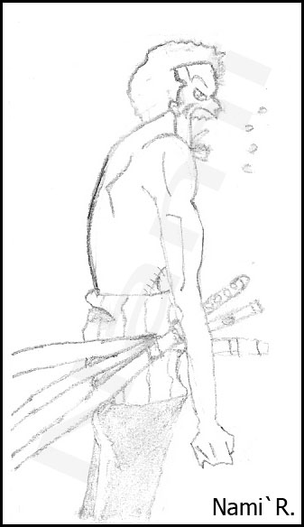 Les dessins de Nami Zorro10