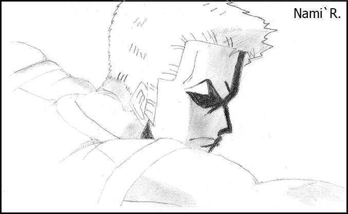 Les dessins de Nami Zorro510