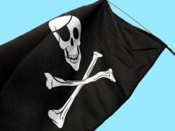 Wii, novità e delucidazioni Pirate10