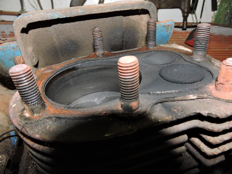 nouveau dans le micro tracteur motostandard Photo_14