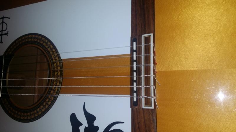 Choisir une bonne guitare (electro-acoustique) Camps10