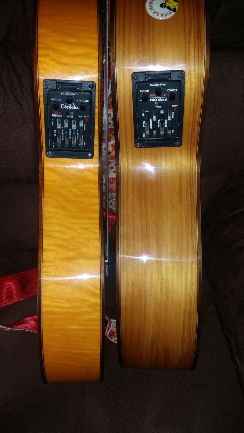 Choisir une bonne guitare (electro-acoustique) Epa14