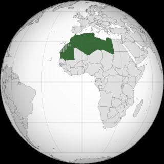 Actualité du Maghreb Langfr11