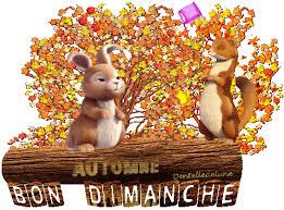 """""""Bonjour / Bonsoir"""" !!! - Page 3 Images18"""
