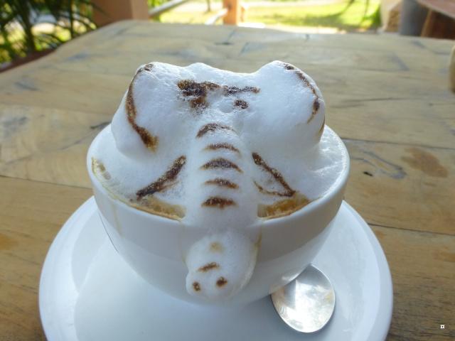 Boire un cappuccino en Thaïlande ! Paysag21