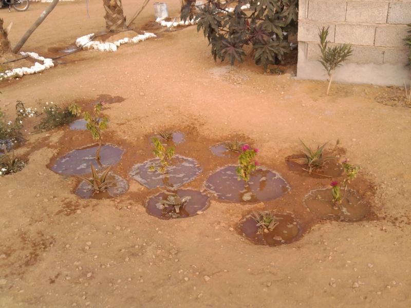 [Maroc Camp/Dernières nouvelles]  BOUIZAKARNE : Camping Tinnoubga   - Page 4 Photo225