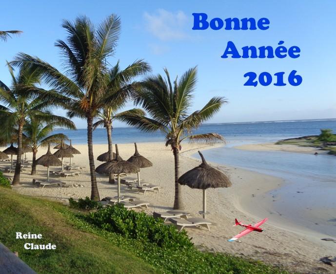 ANNEE 2016  Voeux_10