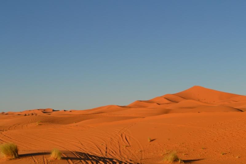 [Le désert] Merzouga Dsc_3811