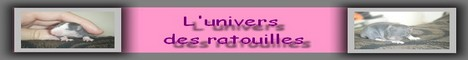 Forum du mois n°6 > Inscription Mini_b19