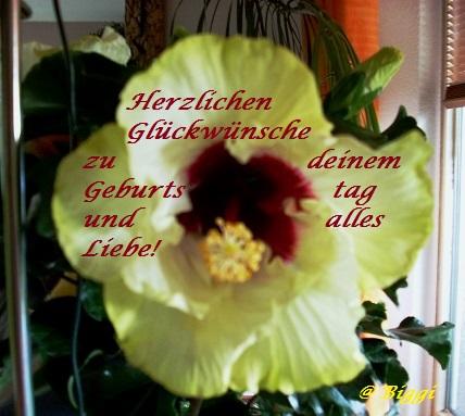 Happy Birthday Gänseblümchen 04_06_10